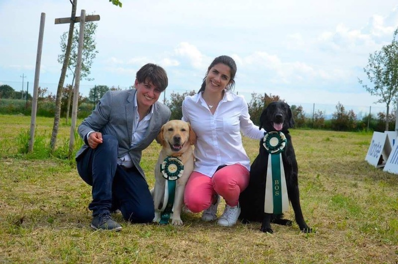 Raduno All Retriever Cervia